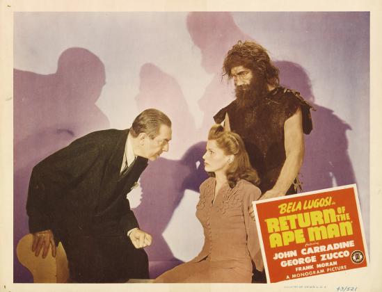 猿人ロビーカード2のリターン