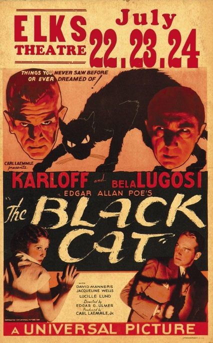 The Black Cat Window Card