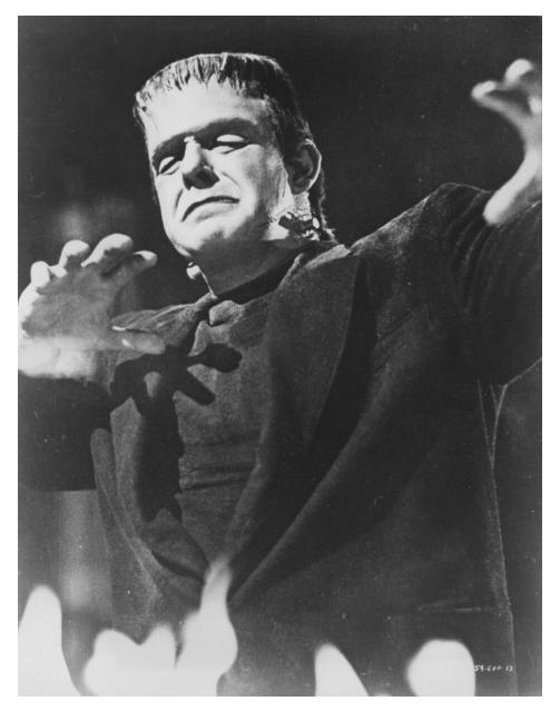 The Ghost of Frankenstein 47