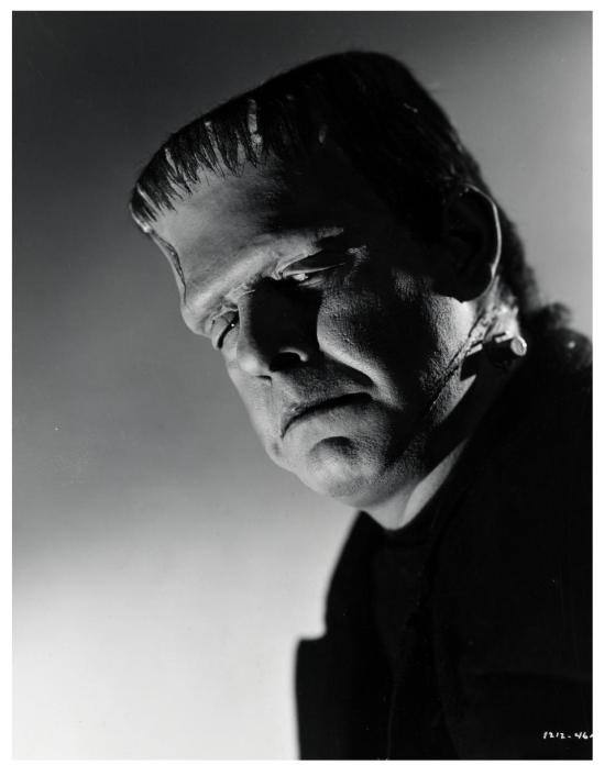 The Ghost of Frankenstein 49