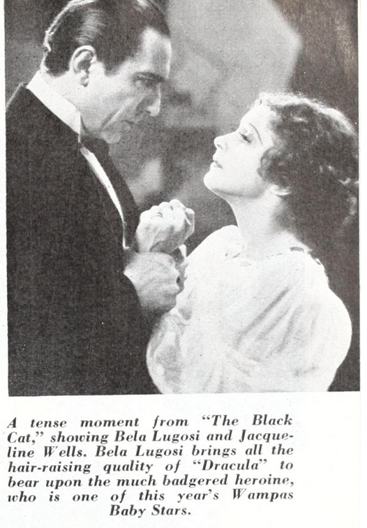 The Black Cat, Universal Weekly, April 28, 1934