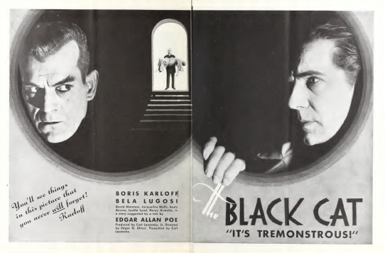 The Black Cat, Universal Weekly February 17, 1934 5