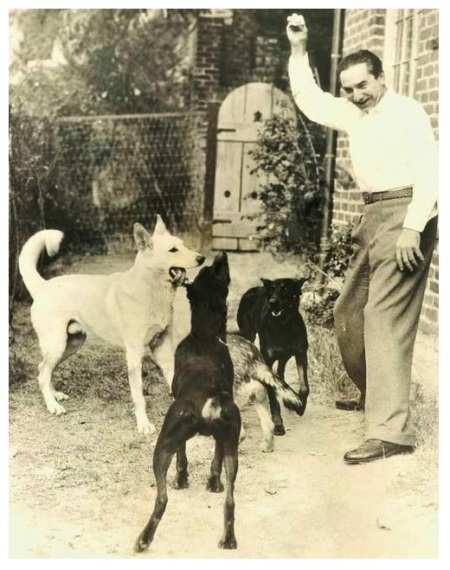 Bela and his dogs 2